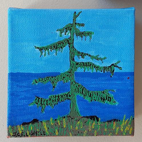"""""""Tree near water"""" by James C E Lightle"""