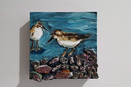 Sandpiper on Beach Stones by James C E Lightle and Jaime Lee Lightle