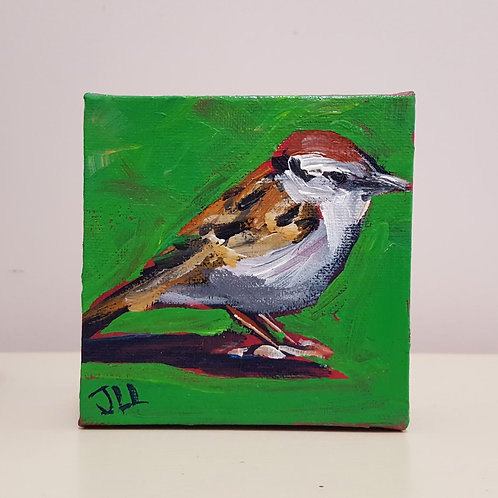 Sweet Sparrow by Jaime Lee Lightle