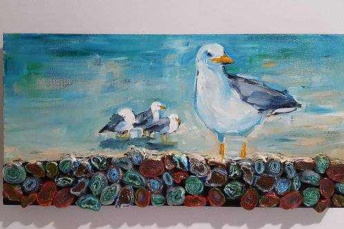 Group of Gulls on Beach Stones by James C E Lightle and Jaime Lee Lightle