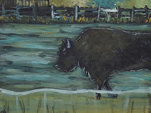 Buffalo Jaime Lee Lightle