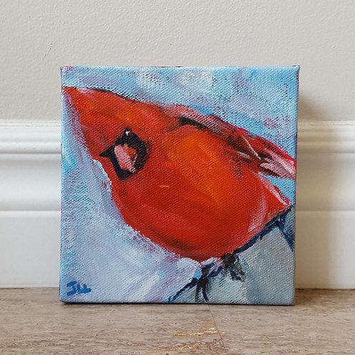 Sideways Cardinal by Jaime Lee Lightle