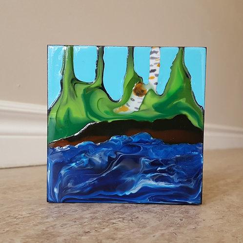 Birch Stump by James C E Lightle