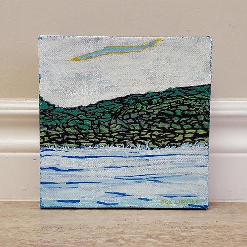 Mossy Shore by James C E Lightle