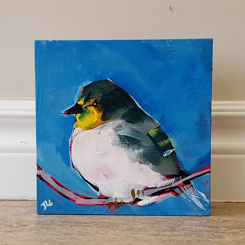 Yellow Finch by Jaime Lee Lightle