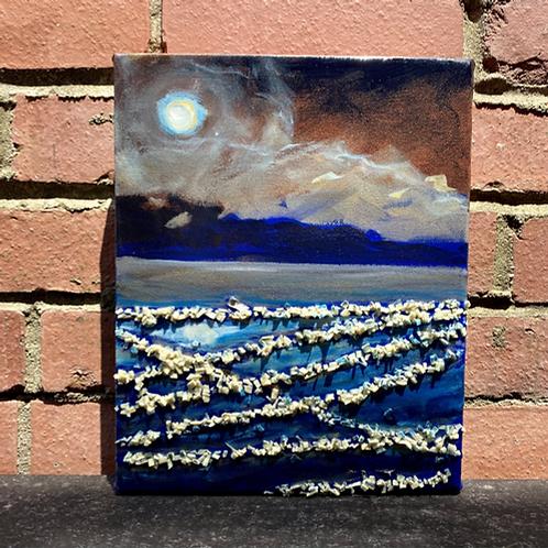 Iridescent Sea by Jaime Lee and James C E Lightle