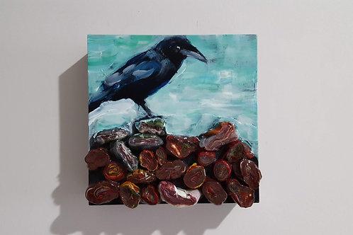 Crow on Beach Stones by James C E Lightle and Jaime Lee Lightle
