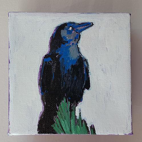 """""""American Crow"""" by Jaime Lee Lightle"""
