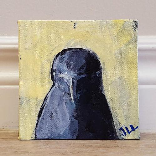 Crow Portrait 3 by Jaime Lee Lightle