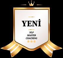 Badge 100.png