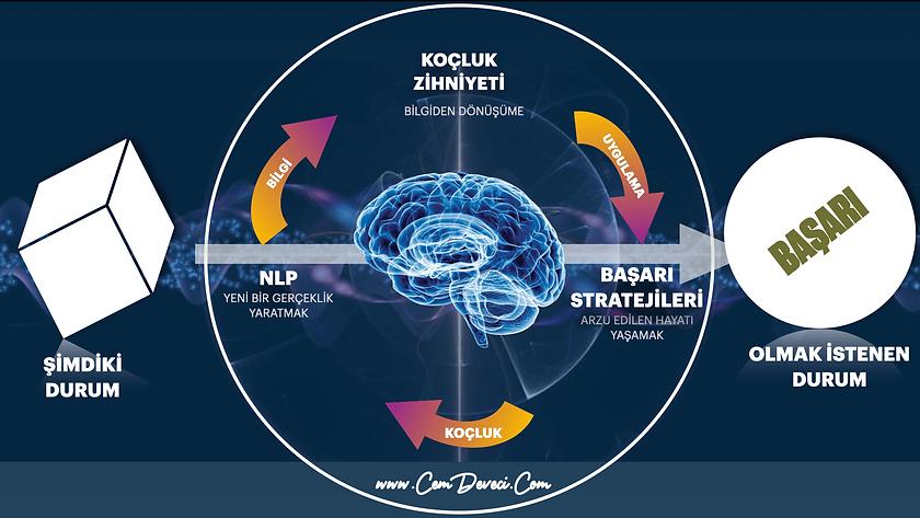 nlp-master-coaching-456.png