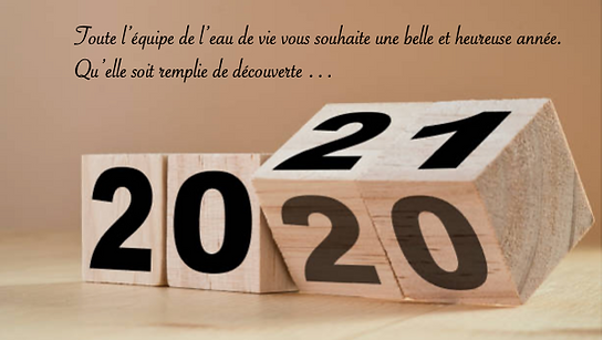 Voeux 2021.png