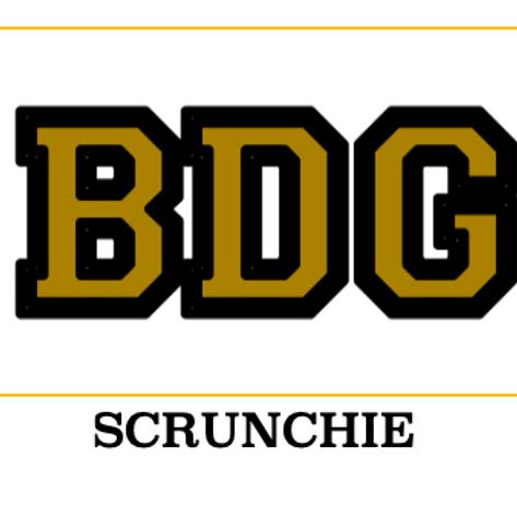 BDG Scrunchie
