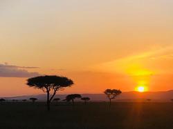 Serengeti sunset.jpg