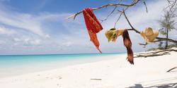 vamizi-island-beach