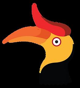 hornbill bird-01 (2).png