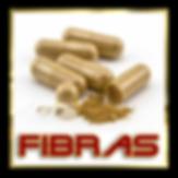 fibras-bo3.png