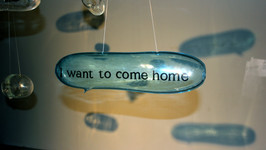 I Want To Come Home