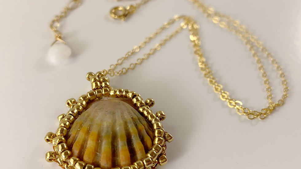 Kauai Sunrise Shell Necklace