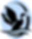 SLHF.logo.png