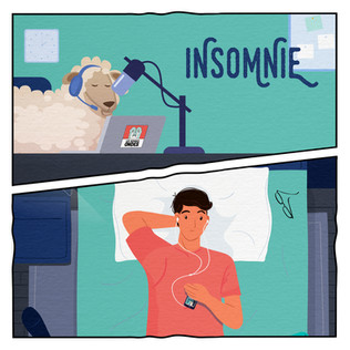 INSOMNIE 08 - 20000 COULE
