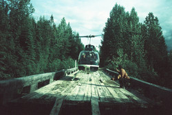 Helicopter Tree Planting