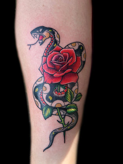 snake-rose