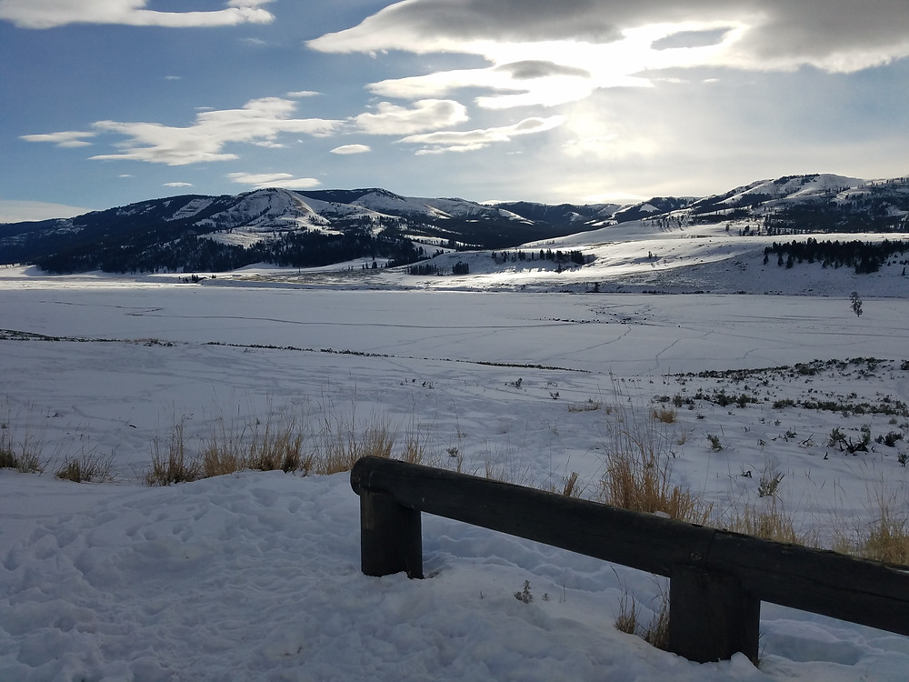 Yellowstone National Park's Lamar Valley in Winter