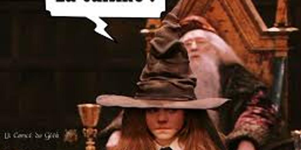 Harry Potter, c'est un très grand honneur (stage enfants) - 160 € - COMPLET