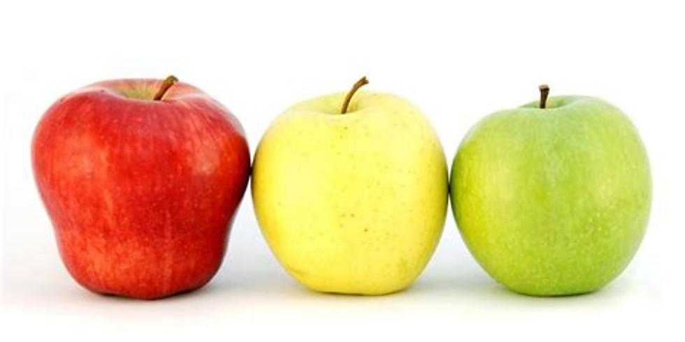 ADULTE - autour de la pomme - 35 euro - COMPLET