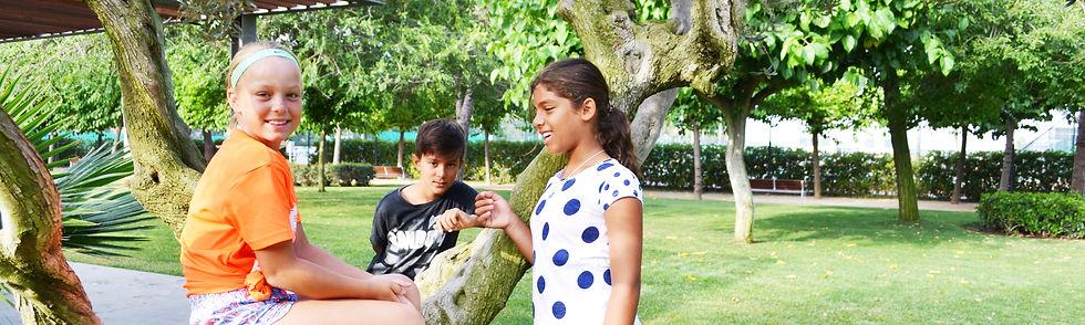 elementary olive tree strip.jpg