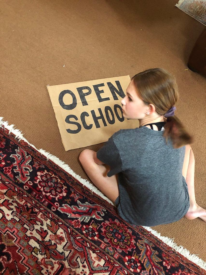 Haffner-open school.jpg