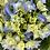 Thumbnail: Blue Hydrangea In Terracotta Pot