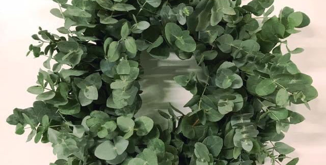 Eucalyptus Sympathy Wreath