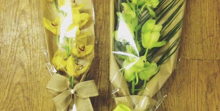 Gift Wrapped Cymbidium Orchid Stem