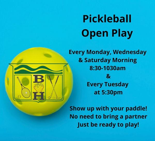 pickleball open court.jpg