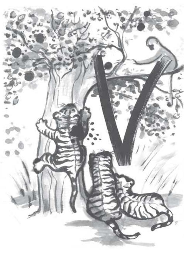 tiger_4