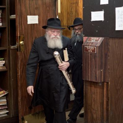 New: Full Purim Database