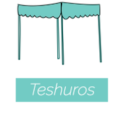200 Recent Teshuros Added