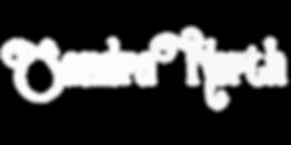 Logotype_SN_White_Space.png