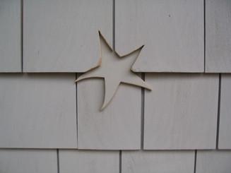 Single Star.JPG