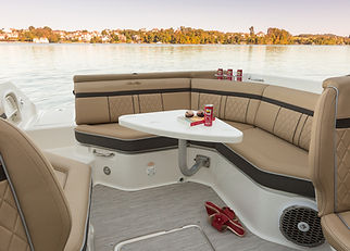 SeaRay Infinity Pictures (2).jpg