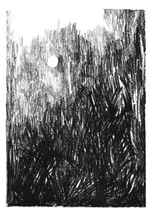 la lune noire.jpg
