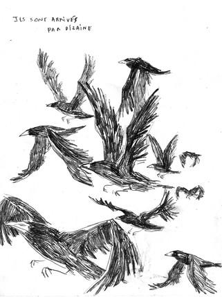 les corbeaux 01.JPG