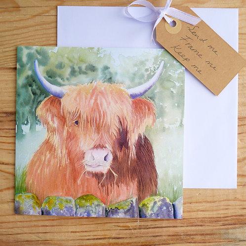 Highland Cow 'Boris'. Gift card