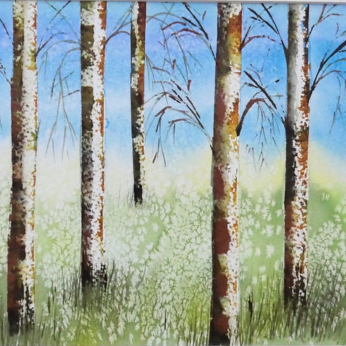Silver Birch. Original Watercolour Painting