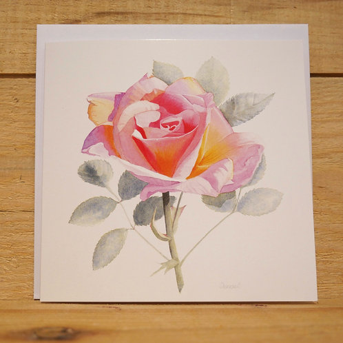 Apricot Rose. Gift card