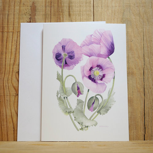 Pink poppies. Gift card