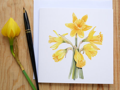 Daffodil gift card, blank inside for your message, suitable forany occasion.