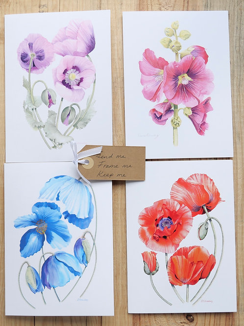Poppy Collection. 8 Cards, Any occasion, Thank you, Birthday, Easter